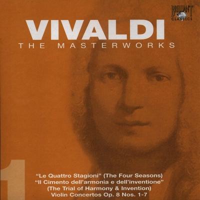 01-VIV01-FRONT